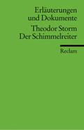 Theodor Storm 'Der Schimmelreiter'