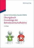 Grundzüge der Betriebswirtschaftslehre, Übungsbuch