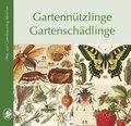 Gartennützlinge, Gartenschädlinge
