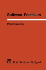Software-Praktikum