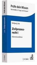 Zivilprozessrecht - Bd.1