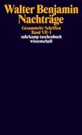 Gesammelte Schriften - Bd.7