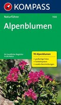 Kompass Naturführer Alpenblumen
