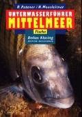 Unterwasserführer Mittelmeer, Fische