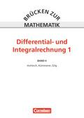 Brücken zur Mathematik: Differential- und Integralrechnung; Bd.4 - Tl.1