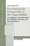 Psychosoziale Diagnostik in der Jugendhilfe