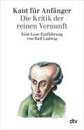 Kant für Anfänger, Die Kritik der reinen Vernunft
