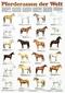 Schreiber Naturtafeln: Pferderassen der Welt