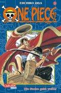 One Piece - Die Suche geht weiter