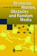 Brownian Motion, Obstacles and Random Media