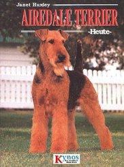 Airedale Terrier heute