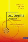 Six Sigma umsetzen