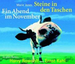 Steine in den Taschen - Ein Abend im November, 4 Audio-CDs