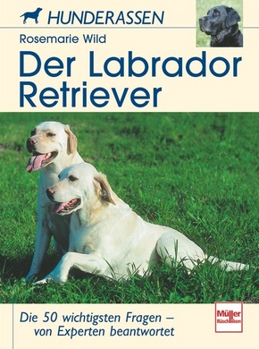 Der Labrador Retriever