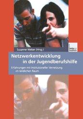 Netzwerkentwicklung in der Jugendberufshilfe