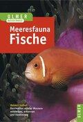 Farbatlas Meeresfauna, 2 Bde.: Fische; Bd.2