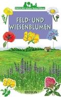Feld- und Wiesenblumen