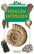 Fossilien entdecken
