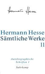 Sämtliche Werke: Autobiographische Schriften - Tl.1