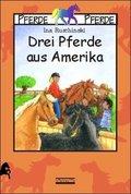 Drei Pferde aus Amerika