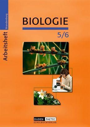 Biologie, Ausgabe Brandenburg, Neubearbeitung: 5./6. Schuljahr, Arbeitsheft