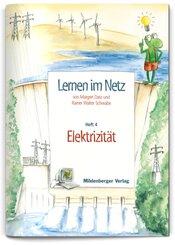 Lernen im Netz: Elektrizität