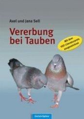 Vererbung bei Tauben