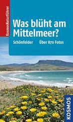 Was blüht am Mittelmeer?