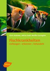 Fischkrankheiten vorbeugen, erkennen, behandeln