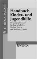 Handbuch Kinder- und Jugendhilfe