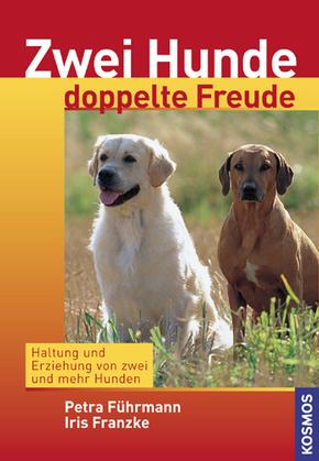 Zwei Hunde - doppelte Freude