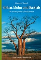 Birken, Mohn und Baobab