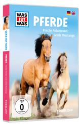 Pferde / Horses, DVD
