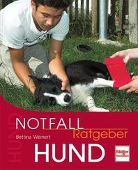 Notfall-Ratgeber Hund