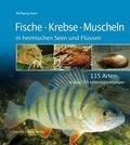 Fische, Krebse und Muscheln in heimischen Seen und Flüssen