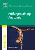 Prüfungstraining Anatomie