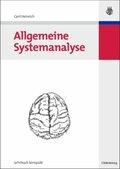 Allgemeine Systemanalyse