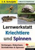 Lernwerkstatt Kriechtiere und Spinnen