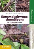 Stummelschwanzchamäleons der Gattung Rieppeleon