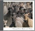 Pferde, 1 Audio-CD