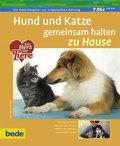 Hund und Katze gemeinsam halten