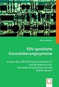 EDV-gestützte Konsolidierungssysteme (eBook, 15x22x2,2)