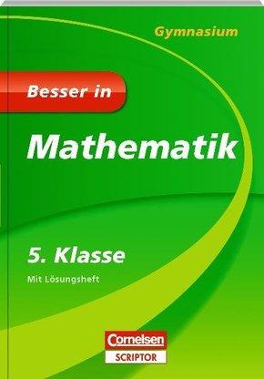 Besser in Mathematik, Gymnasium; 5. Klasse