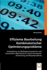 Effiziente Bearbeitung Kombinatorischer Optimierungsprobleme (eBook, PDF)