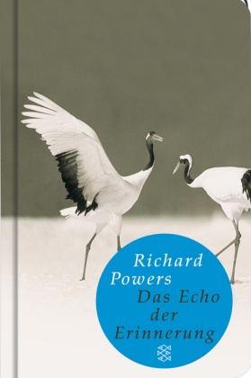 Das Echo der Erinnerung (Fischer Taschenbibliothek)