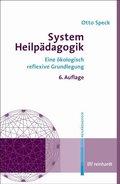 System Heilpädagogik