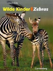 Zebras   ; Wilde Kinder; Deutsch; , zahlr. durchg. farb. Abb. -