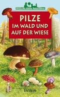 Pilze im Wald und auf der Wiese