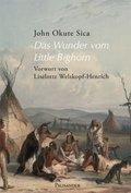 Das Wunder vom Little Bighorn