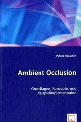 Ambient Occlusion (eBook, PDF)